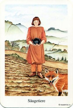 Nine of Pentacles.jpg