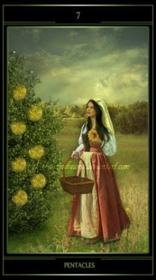 seven_of_pentacles_by_thelemadreams-d6lkhdk.jpg